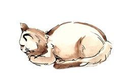 отдыхать кота иллюстрация вектора