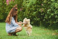 Отдыхать с собакой в парке Стоковые Изображения