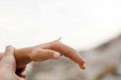 Отец держит руку ` s ребенка на которой малое насекомое сидит Стоковые Фотографии RF