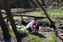 Отец и дочь идя около реки леса стоковая фотография rf