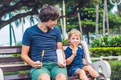 Отец и сын едят зажаренные сладкие картофели в парке еда рыб огурца принципиальной схемы цыпленка сыра бургера предпосылки глубок Стоковые Фотографии RF