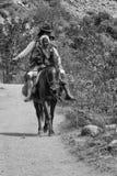 Отец и сын на лошади стоковые фотографии rf