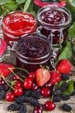 Отечественное варенье ягоды стоковое изображение