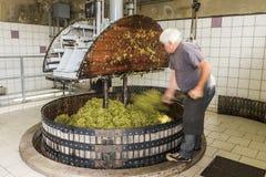 Отжимать виноградины в Pressoir Шампани Стоковое фото RF