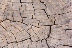 Отказы безшовной предпосылки текстуры старые деревянные Стоковые Фото