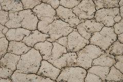 Отказы в сухой земле Стоковое фото RF