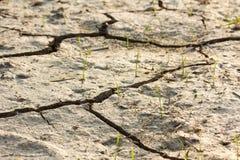 Отказ грязи Стоковое Изображение