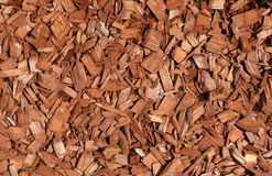 откалывает древесину Стоковые Фотографии RF