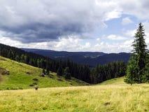 Отключение горы в Vatra Dornei Стоковое Изображение RF