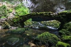 Открывать одичалые пещеры стоковые изображения