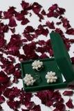 Открытая зеленая коробка бархата для ювелирных изделий В ем лежит комплект: кольцо и серьги с жемчугами На белой предпосылке, пос Стоковое Изображение RF