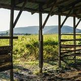 Открытие гидротехнического затвора амбара вне в золотое поле Стоковое Фото