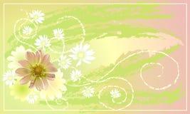 открытка изображения Стоковое Изображение RF