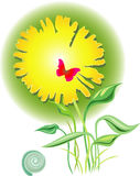 открытка изображения Стоковое Фото