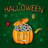 Открытка, плакат на хеллоуин Волшебство праздника, пауки, черви, сети паука Большая тыква с глазами декоративные элементы Стоковое фото RF