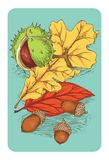 Открытка с конским каштаном, жолудями и листьями иллюстрация штока