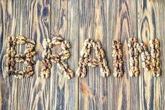 Открытка с мозгом надписи Линии, который слезли стерженей грецкого ореха сформировали как мозг слова Стоковое фото RF