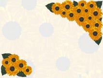 Открытка с солнцецветом и листьями в желтых цветах Стоковая Фотография