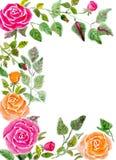 открытка Стоковые Изображения RF