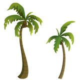 открытки ладони grunge конструкции кокоса тип старой ретро Стоковые Фотографии RF
