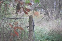 Открытое ворот в луге стоковая фотография rf
