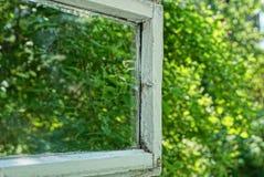 Открытое деревянное окно с стеклом и зеленым цветом выходит на улицу стоковое фото rf
