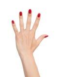 Открытые перста 5 жеста рукой вверх Стоковое Изображение