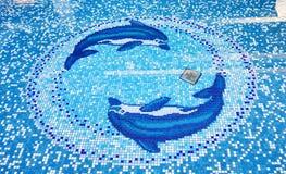 Открытый бассейн с изображениями дельфинов на дне и ясном wat стоковое изображение rf
