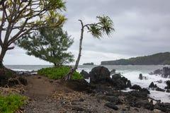 Открытый всем ветрам пляж Мауи Стоковые Изображения RF