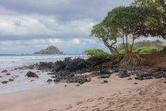 Открытый всем ветрам пляж Мауи Стоковые Фотографии RF