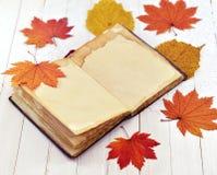 Открытый дневник с упаденными листьями стоковая фотография rf