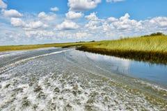 Отключение аллигатора airboat болотистых низменностей США положения Флориды Стоковая Фотография RF