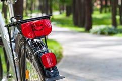 Отключение велосипеда в парке Стоковое Изображение