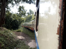 Отключение поезда через джунгли Стоковое фото RF