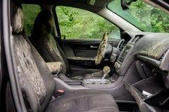 Отлейте растя внутренность в форму затопленный автомобиль после урагана Харви стоковое фото