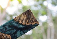 Отливка бара узелка Afzelia деревянная с эпоксидной смолой стабилизируя для пробелов стоковые изображения rf