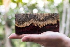 Отливка бара узелка Afzelia деревянная с эпоксидной смолой стабилизируя для пробелов стоковые изображения