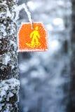 Отметка знака Snowshoes пешая на дереве в следе леса зимы Стоковое Фото