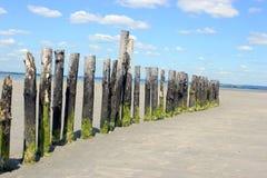 Отметки прилива на пляже Стоковая Фотография RF