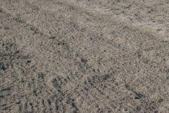 Отмелая почва Стоковая Фотография