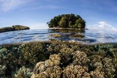 Отмелые коралловый риф и остров Стоковая Фотография