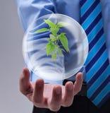Относящая к окружающей среде принципиальная схема Стоковые Изображения