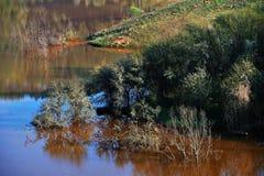 относящое к окружающей среде загрязнение Стоковое фото RF