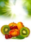 отображайте много крупный план плодоовощ стоковые изображения