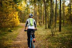 Отображайте от задней части девушки в шлеме на велосипеде Стоковые Изображения RF