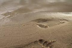 Отпечаток в песке Стоковые Изображения RF