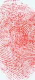 Отпечаток пальцев изолированный на белизне стоковое изображение rf