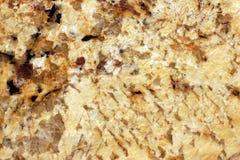 Отполированная вызванная поверхность желтого гранита, Giallo Veneziano Стоковые Фотографии RF