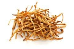 отпочковывает китайское высушенное травяное medici лилии традиционное Стоковые Изображения