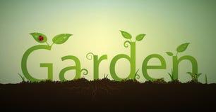 Отправьте СМС письма садовничайте и позеленейте росток весны с корнями и красным ladybug в почве, надписью сада лета, Стоковые Изображения